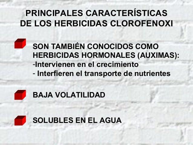 TOXICOCINÉTICA DE LOS HERBICIDAS CLOROFENOXI (Cont.) RENAL (se recupera casi 100%) ELIMINACIÓN