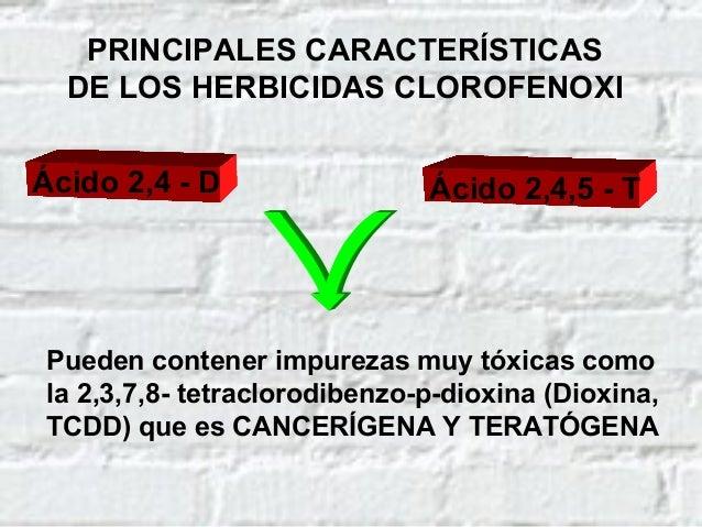 MECANISMO DE ACCIÓN DE LOS HERBICIDAS CLOROFENOXI INTERFIEREN CON LA RESPIRACIÓN CELULAR (DESACOPLAN LA FOSFORILACIÓN OXID...