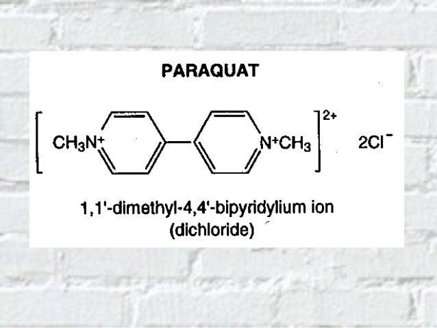 Características físico-químicas del paraquat • Compuesto polar • Se presenta en forma de sales de cloruros (C12H14N2Cl2) o...