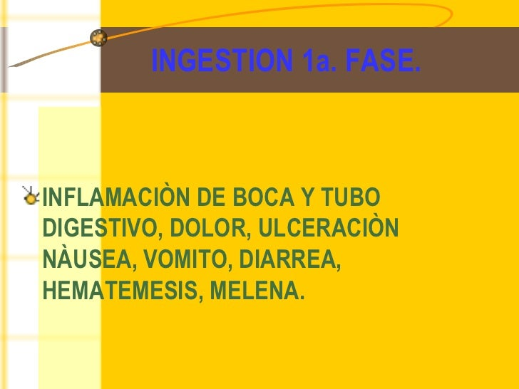 INGESTION 1a. FASE. <ul><li>INFLAMACIÒN DE BOCA Y TUBO DIGESTIVO, DOLOR, ULCERACIÒN NÀUSEA, VOMITO, DIARREA, HEMATEMESIS, ...