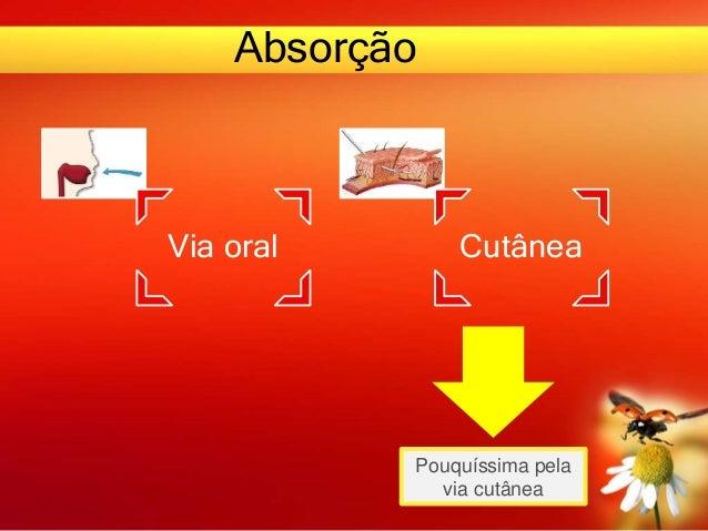Absorção Via oral Cutânea Pouquíssima pela via cutânea