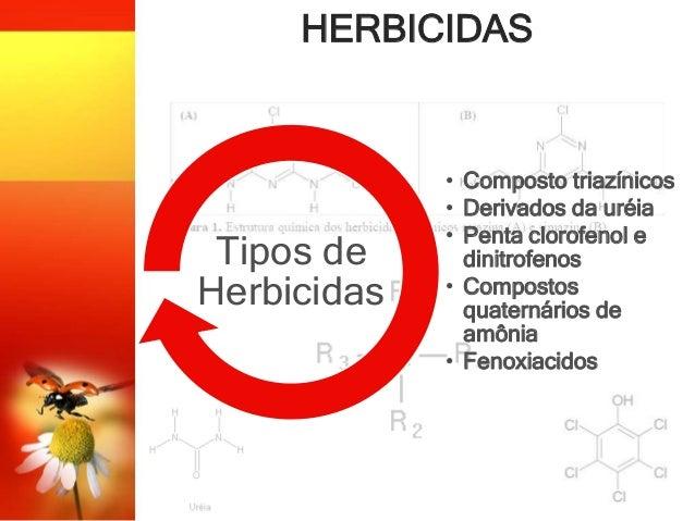 HERBICIDAS • Composto triazínicos • Derivados da uréia • Penta clorofenol e dinitrofenos • Compostos quaternários de amôni...