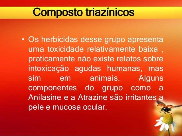 Composto triazínicos • Os herbicidas desse grupo apresenta uma toxicidade relativamente baixa , praticamente não existe re...