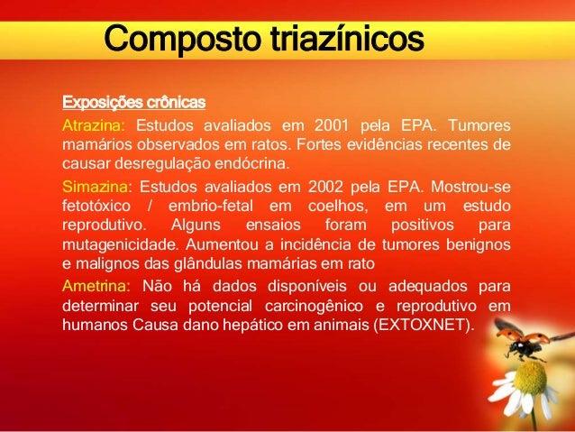 Composto triazínicos Exposições crônicas Atrazina: Estudos avaliados em 2001 pela EPA. Tumores mamários observados em rato...