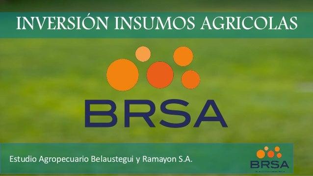INVERSIÓN INSUMOS AGRICOLAS Estudio Agropecuario Belaustegui y Ramayon S.A.