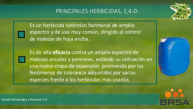 Es un herbicida sistémico hormonal de amplio espectro y de uso muy común, dirigido al control de malezas de hoja ancha. Es...