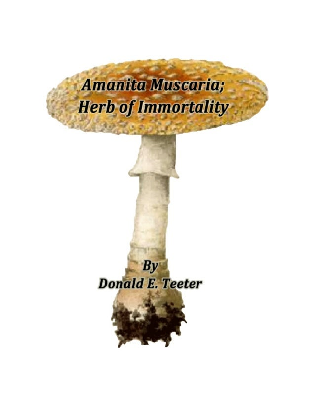 Amanita Muscaria; Herb of Immortality Brought to you by The Ambrosia Society in cooperation with the Author Permission is ...