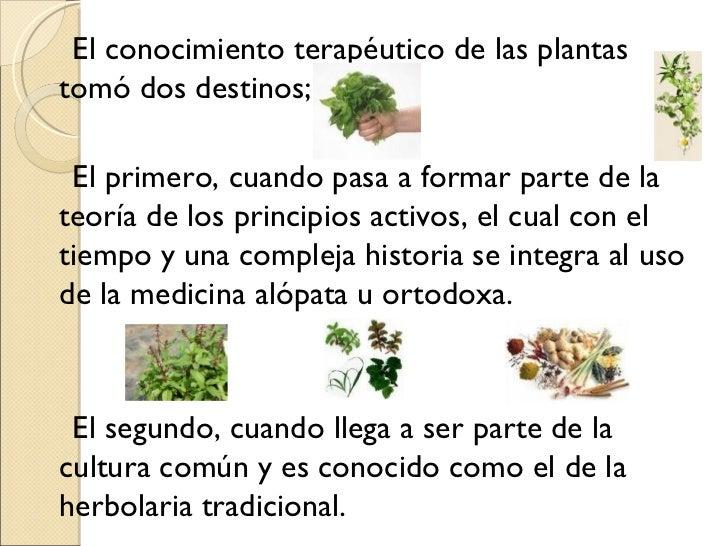 Historia De Medicina Herbolaria