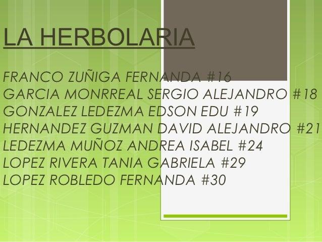 LA HERBOLARIAFRANCO ZUÑIGA FERNANDA #16GARCIA MONRREAL SERGIO ALEJANDRO #18GONZALEZ LEDEZMA EDSON EDU #19HERNANDEZ GUZMAN ...