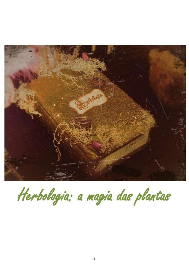 1 Herbologia: a magia das plantas