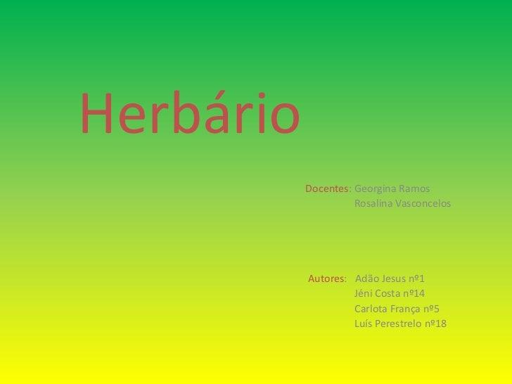 Herbário<br />Docentes: Georgina Ramos<br />                                           Rosalina Vasconcelos<br />Autores: ...