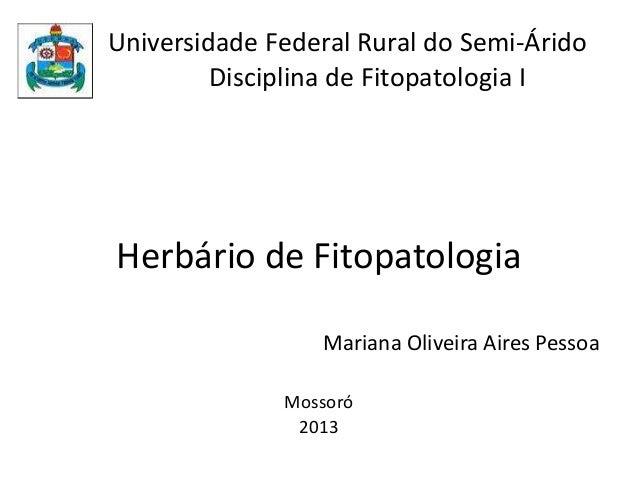 Universidade Federal Rural do Semi-Árido Disciplina de Fitopatologia I Herbário de Fitopatologia Mariana Oliveira Aires Pe...