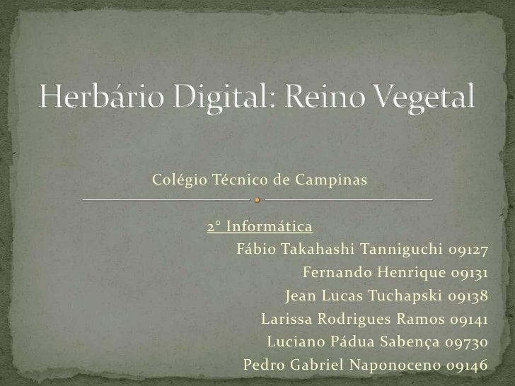Herbário Digital: Reino Vegetal<br />Colégio Técnico de Campinas<br />2° Informática<br />Fábio Takahashi Tanniguchi 09127...