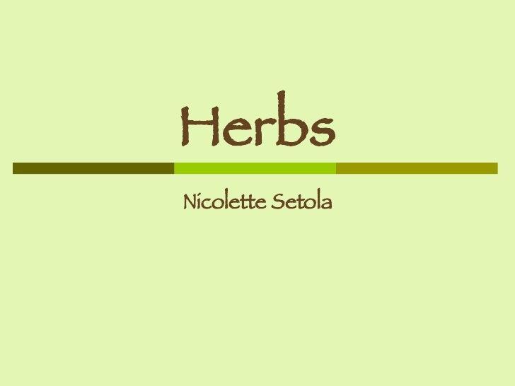 Herbs Nicolette Setola