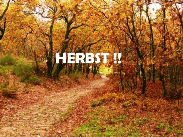 HERBST !!
