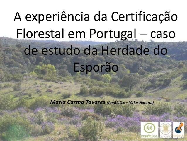 Maria Carmo Tavares (AmBioDiv – Valor Natural) A experiência da Certificação Florestal em Portugal – caso de estudo da Her...
