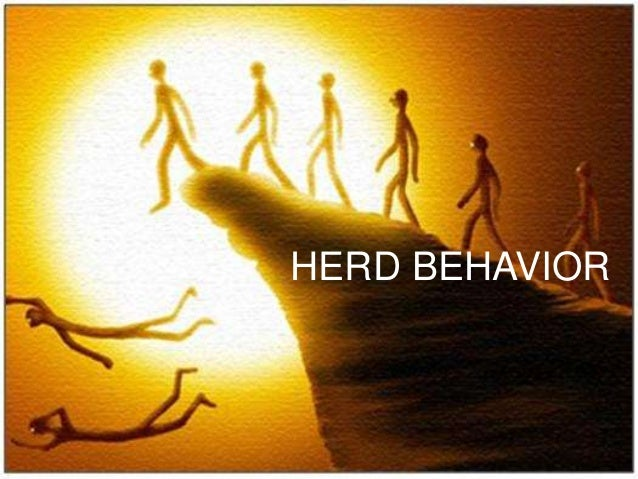 herd behaviour and the housing bubble and collapse Herd behavior and information cascade: herd behavior is a key characteristic of every speculative bubble it occurs when investors follow the majority view or believe authorities even when they plainly contradict matter-of-fact judgment.