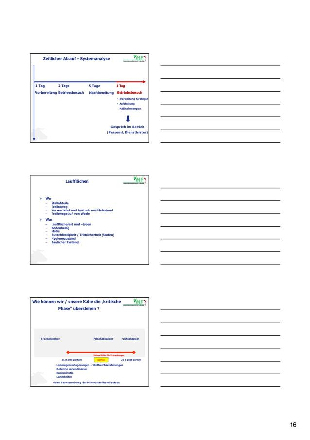 16 Betriebsbesuch 2 Tage Nachbereitung 5 Tage Betriebsbesuch 1 Tag • Erarbeitung Strategie • Aufstellung Maßnahmenplan Ges...