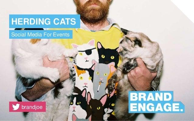 HERDING CATS Social Media For Events brandjoe