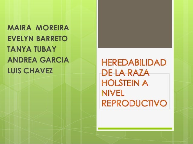 MAIRA MOREIRA EVELYN BARRETO TANYA TUBAY ANDREA GARCIA LUIS CHAVEZ