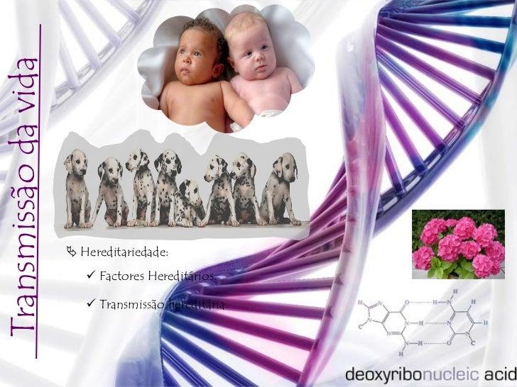 Transmissão da vida                       Hereditariedade:                          Factores Hereditários.              ...