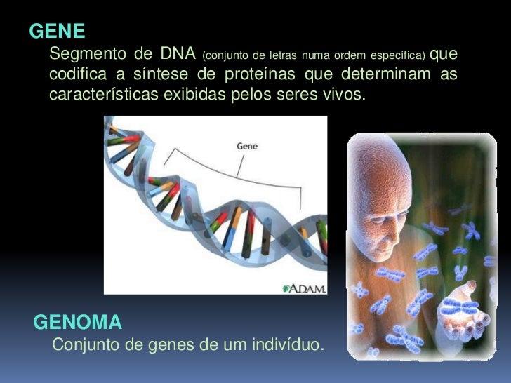 Número de cromossomas característico de algumas espécies