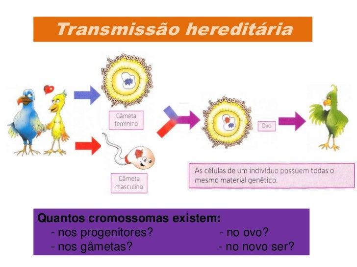 Qual o mecanismo detransmissão de caracteres      hereditários?                    (1822-1884)