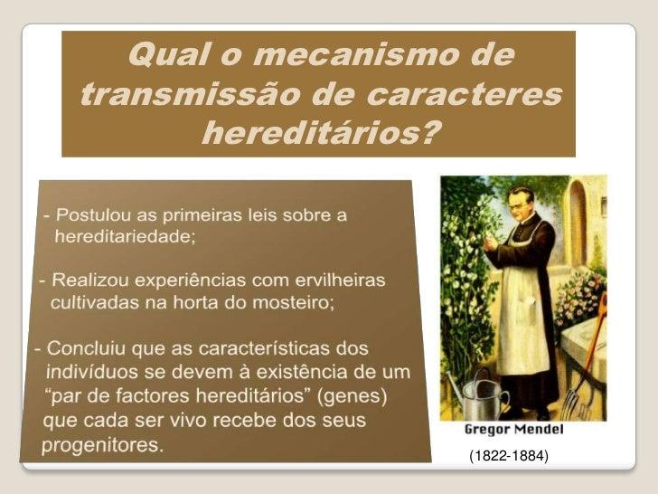 Caracteres da ervilheira estudados por Mendel