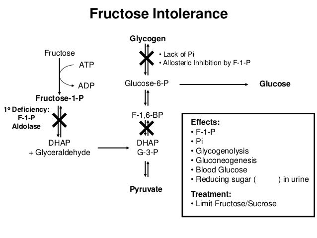 Hereditary fructose intolerance (hfi)