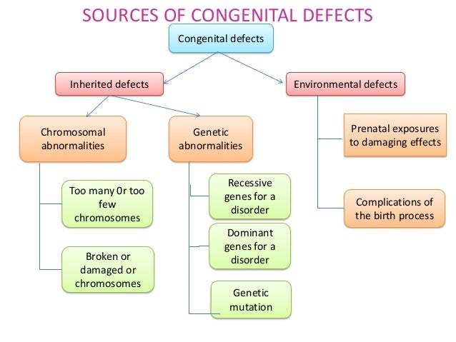 a genetic disorder: tay-sachs disease essay Why is a baby born with tay-sachs disease tay-sachs is an inherited disease that only occurs when  it is best to consult a genetic counselor who can explain the.