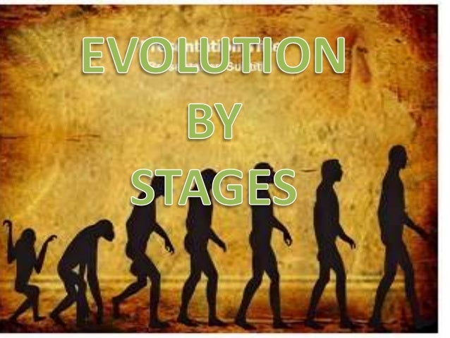 Evolution By Stages