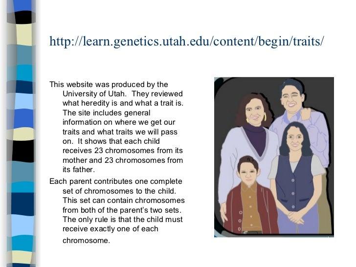 Old Tour of Basic Genetics