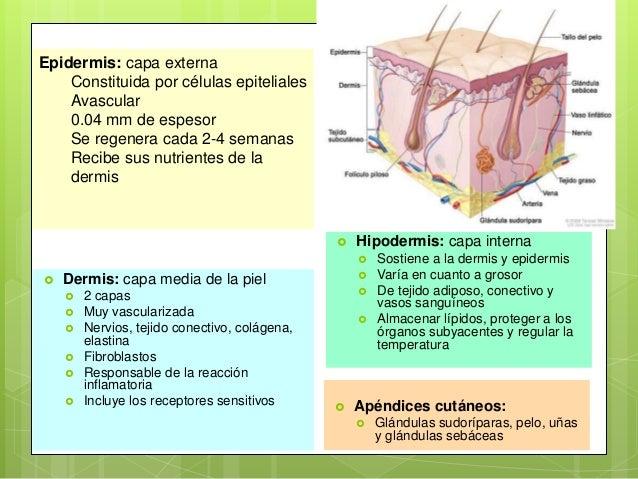 HERIDAS CLASIFICACIÓN DE HERIDAS Y SU MANEJO