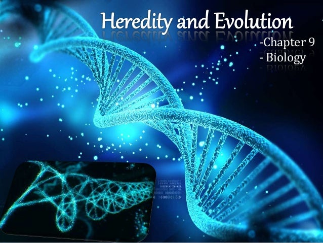 -Chapter 9 - Biology