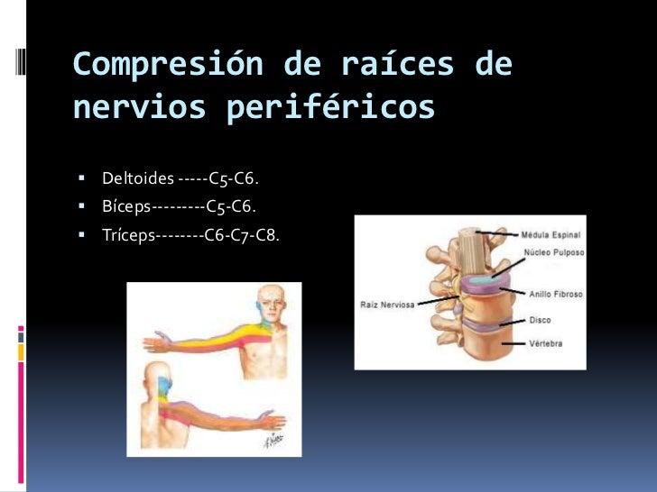 Se puede poner el sinapismo en sheynyy la osteocondrosis