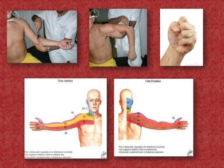 antiinflamatorios esteroides y no esteroides