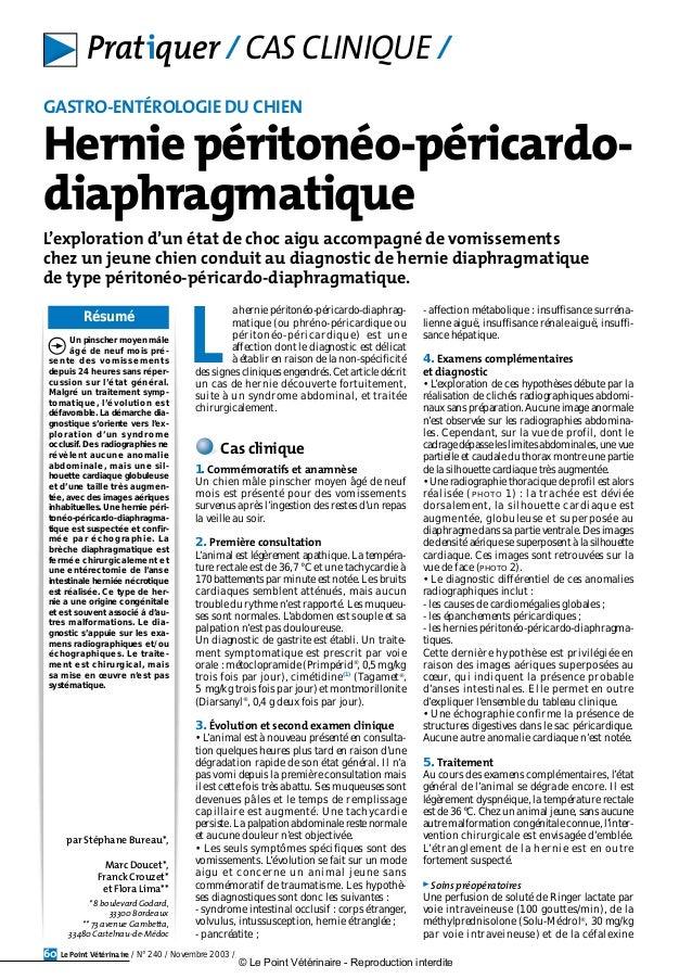 Résumé Le Point Vétérinaire / N° 240 / Novembre 2003 /60 L'exploration d'un état de choc aigu accompagné de vomissements c...