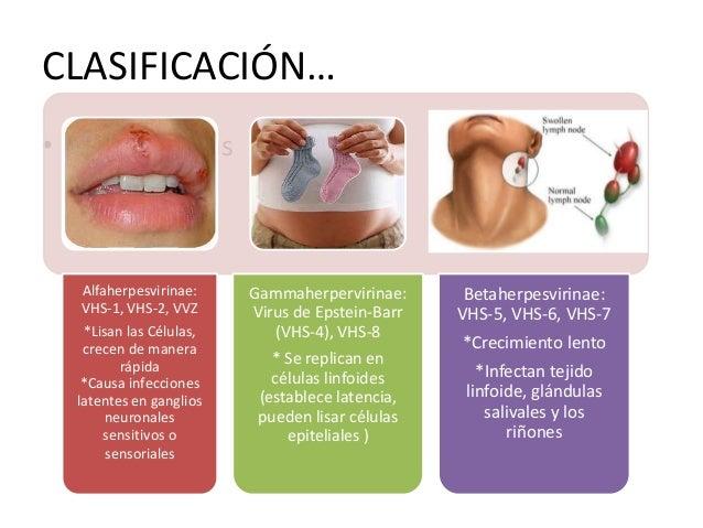 VIRUS HERPES SIMPLE 1… • Codifica aprox. 80 proteínas. • Polimerasa de ADN dependiente de ADN • Enzimas depuradoras: Desox...