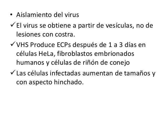 TRATAMIENTO… • Aciclovir, valaciclovir, peniciclovir y famciclovir ( estos farmácos se incorporan al ADN virico e impiden ...