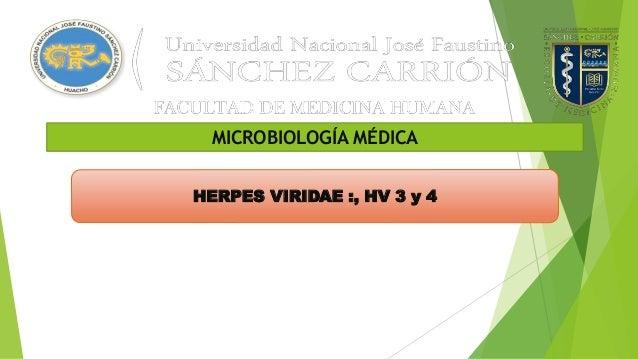 MICROBIOLOGÍA MÉDICA HERPES VIRIDAE :, HV 3 y 4