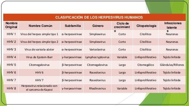Anticorpi anti - Herpes simplex tipo 1 e tipo 2 (HSV-1 e ...