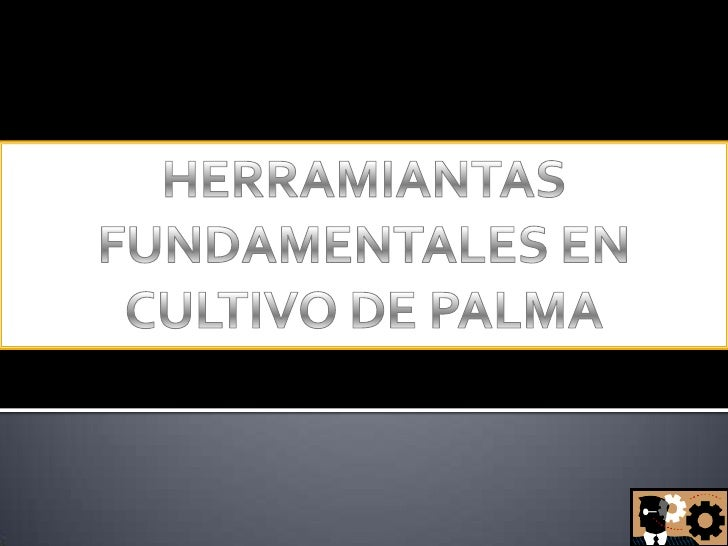 HERRAMIANTAS FUNDAMENTALES EN CULTIVO DE PALMA<br />
