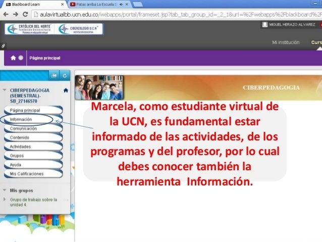 Marcela, como estudiante virtual de la UCN, es fundamental estar informado de las actividades, de los programas y del prof...