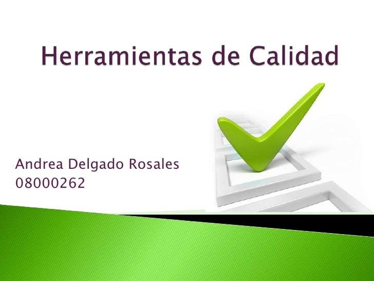 Andrea Delgado Rosales 08000262