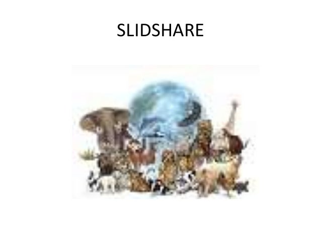 SLIDSHARE