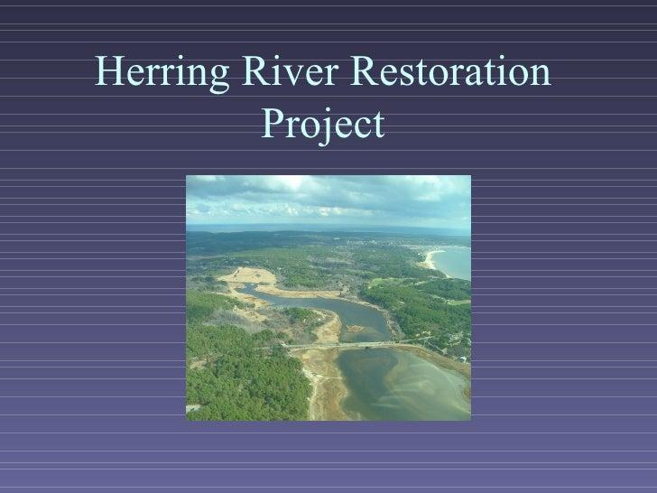 Herring River Restoration Project