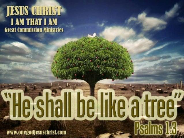 Psalms 1:1-3 1 Mapalad ang tao na hindi lumalakad sa payo ng masama, ni tumatayo man sa daan ng mga makasalanan, ni nauupo...