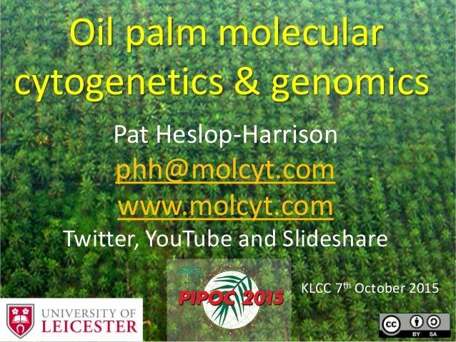 Oil palm molecular cytogenetics & genomics KLCC 7th October 2015 Pat Heslop-Harrison phh@molcyt.com www.molcyt.com Twitter...