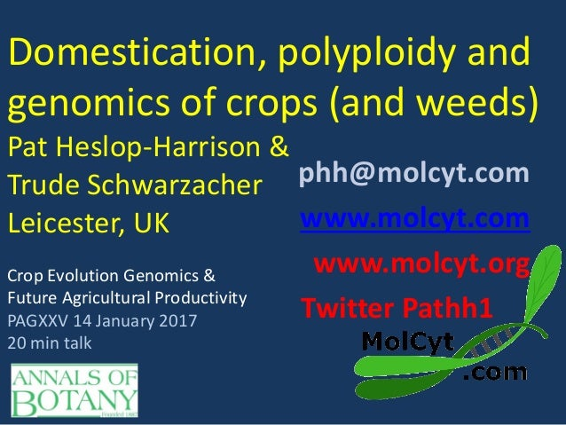 Domestication, polyploidy and genomics of crops (and weeds) Pat Heslop-Harrison & Trude Schwarzacher Leicester, UK phh@mol...