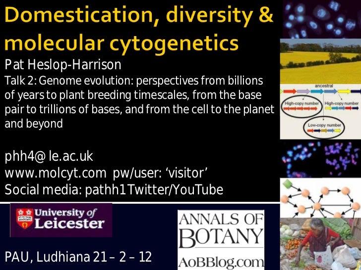 Domestication, Diversity and Molecular Cytogenetics Pat Heslop-Harrison